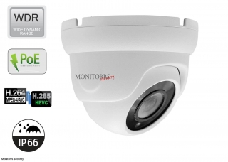 Monitorrs Security IP kamera 2 MPix Štandard WDome (6001)